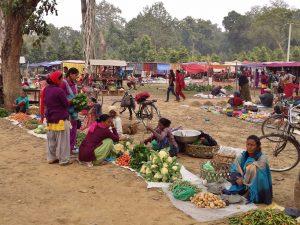 Thakurdwara Bardiya nepal