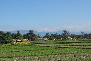 Shivalikhills view Bardia Homestay