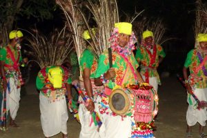Tharu dancing Bardia Homestay