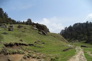 Khaptad National Park Bukipani