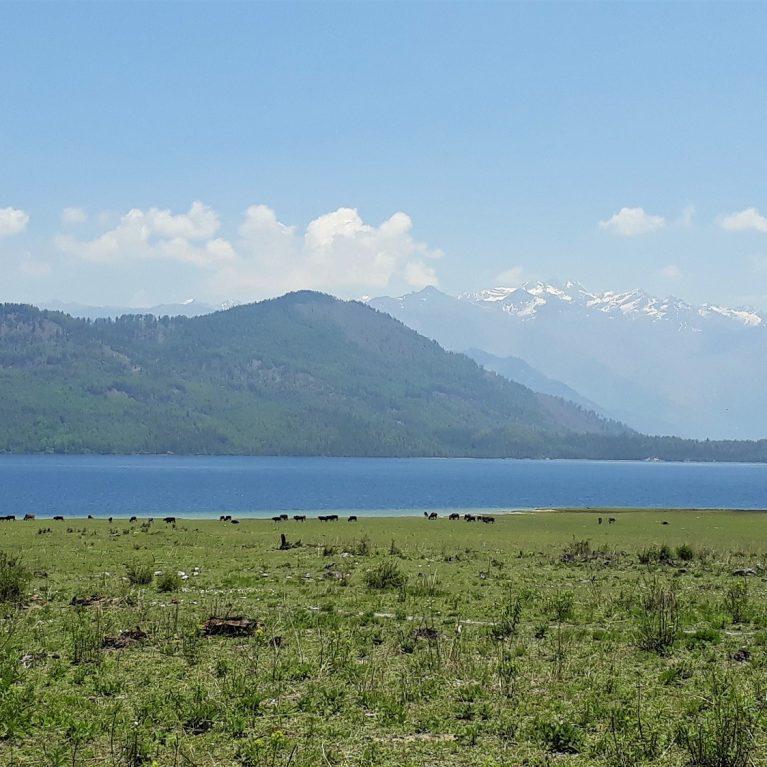 Rara Lake Rara National Park Nepal