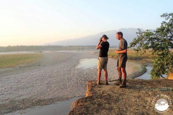 Bardia National Park Nepal wildlife spotting