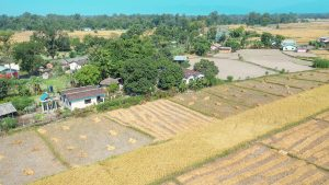 Drone view countryside Bardia Homestay Nepal