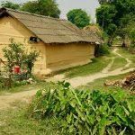 Tharu house Bardia National Park Nepal
