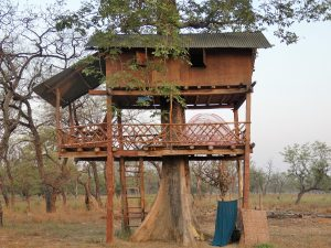 Treehouse Bardia National Park